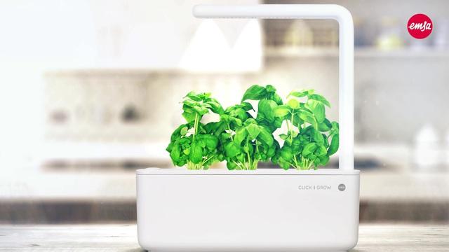 Emsa - Click & Grow - Smart Garden Video 3